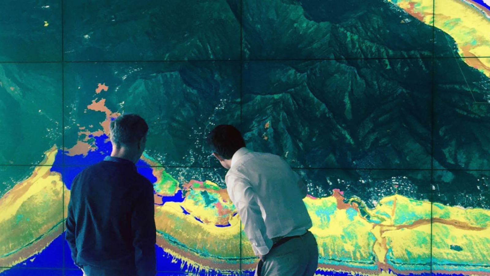 Researchers examine a visualization made by the Moorea Island Digital Ecosystem Avatar at a physical-modeling workshop in Zurich.