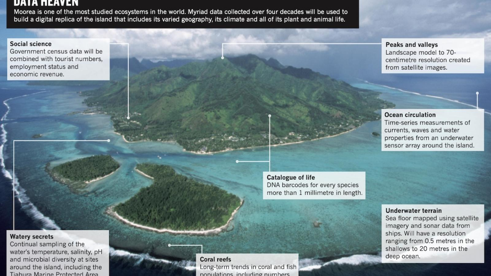 Tropical paradise inspires virtual ecology lab